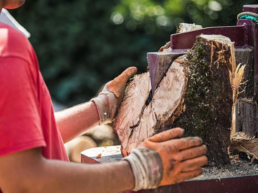 Splitting Log